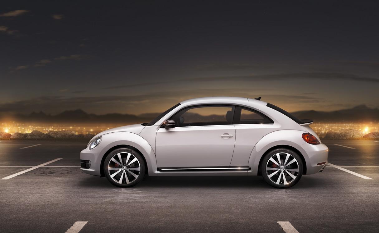 31_beetle02